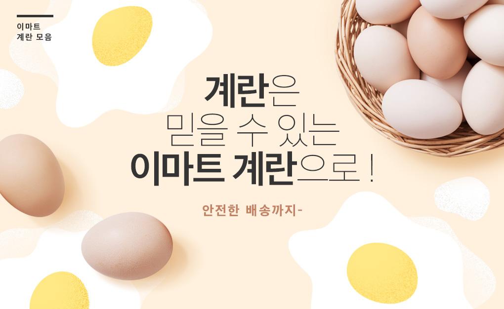 계란기획전