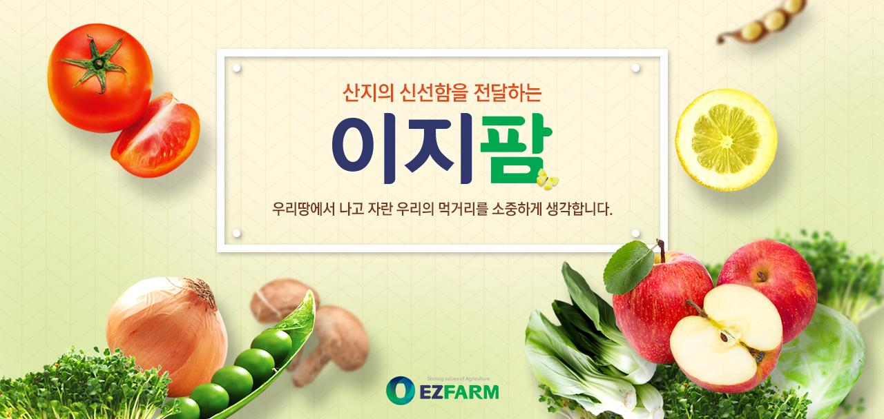 이지팜 제철과일 채소