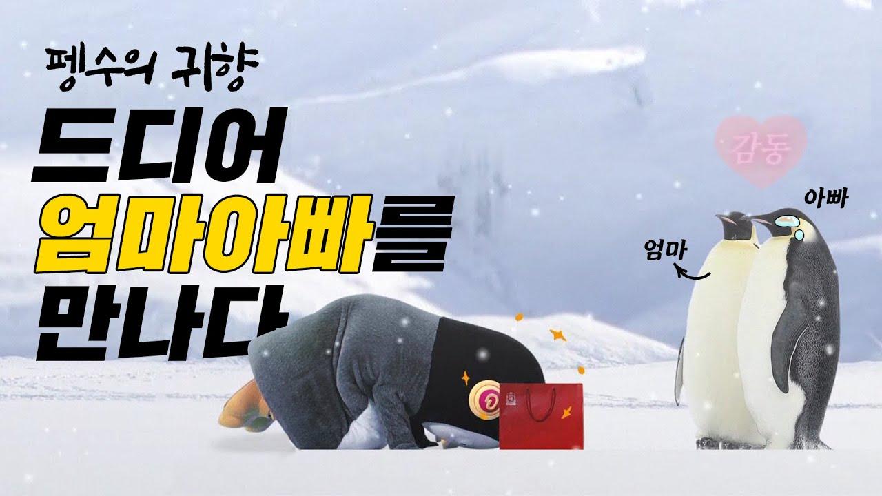 정관장_펭수