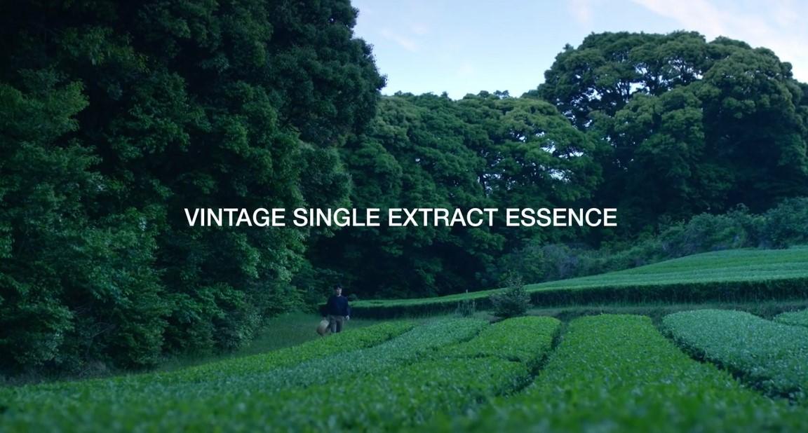 빈티지 에센스 <100 days journey of VINTAGE ESSENCE>
