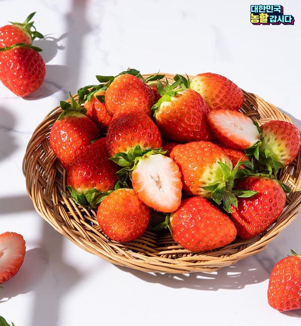 0219 농림식품부 행사